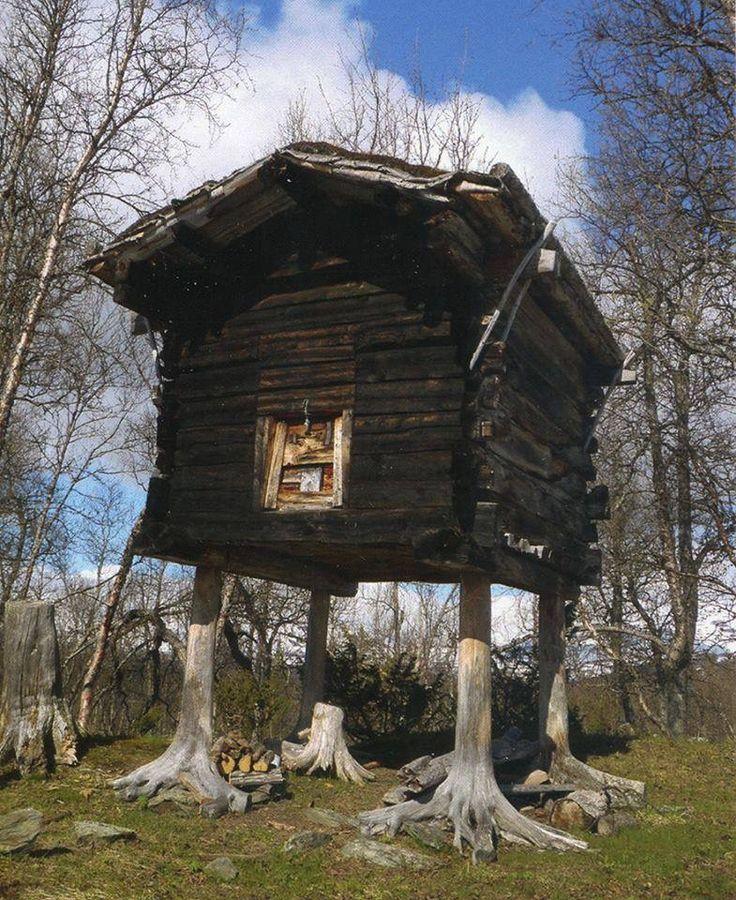 Photo montrant une petite maison en bois surélevée par quatre troncs d'arbres, comme si la maison avait quatre pattes.